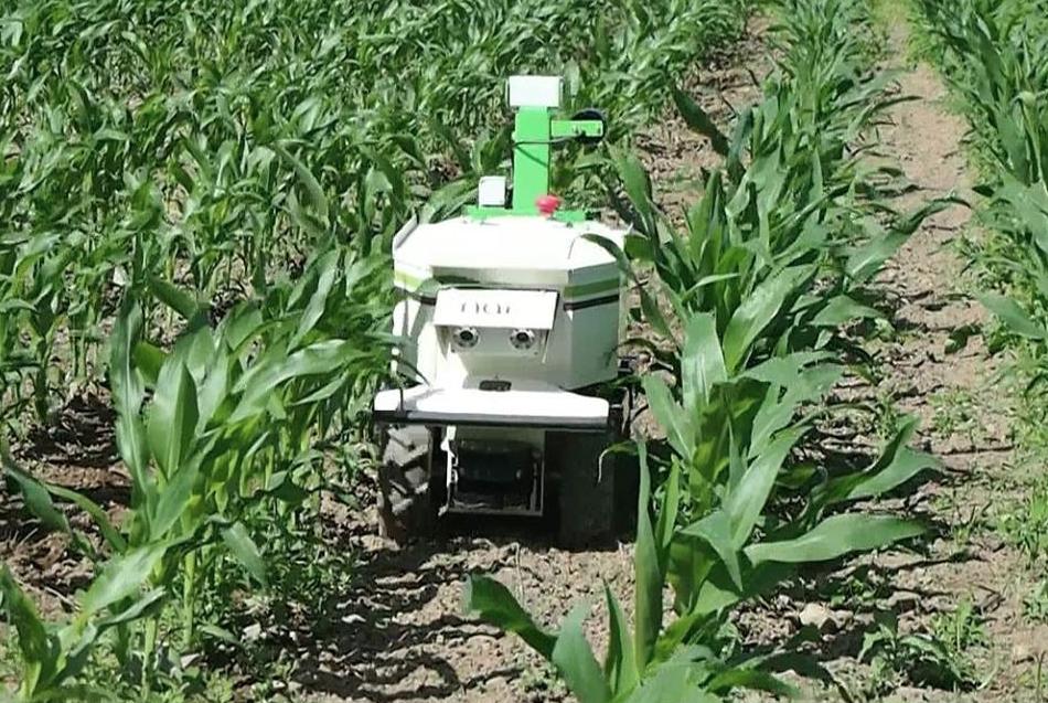 Des robots pour le d sherbage salon aux champs le for Salon aux champs